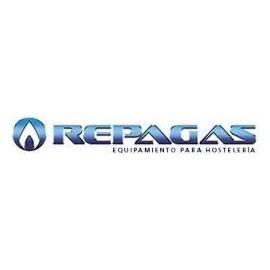 FREIDORAS REPAGAS